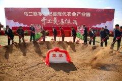 宏福现代农业产业园建设项目四季番茄小镇在乌兰察布开工建设